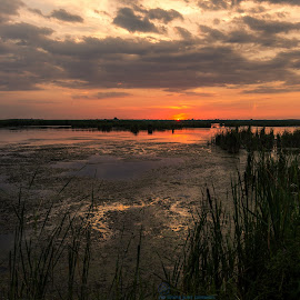by Voicu Sorin-Andrei - Landscapes Waterscapes ( sunset, delta )