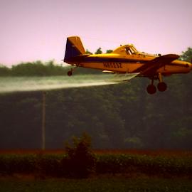 da plane  by Pam Satterfield Manning - Transportation Airplanes ( spray, cornfield, airplane, transportation, fertilizer, crop duster, farming, crop, flying, treetops, forrest, tree, plane, wings )