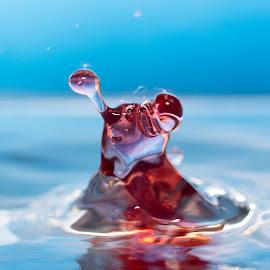 Splash slug by Vandal Panda Photog - Abstract Water Drops & Splashes ( water, macro, red, splashing, splash, drop, splashes, nikon )