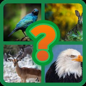 Quiz de Animales For PC (Windows & MAC)