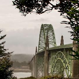 by Jim-Sue Mehrwein - Buildings & Architecture Bridges & Suspended Structures