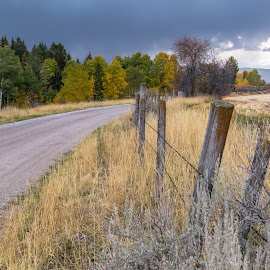 Old Fence and Road Leaving Darby by Chad Roberts - Landscapes Prairies, Meadows & Fields ( teton valley, idaho, field, fence, darby canyon, lichens, wyoming )