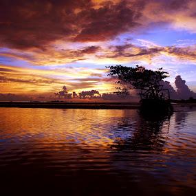 by Mohd Shahrizan Taib - Landscapes Waterscapes ( water, sky, zuiko lens, tree, blue, 14mm, e-30, sea, tripod, olympus )