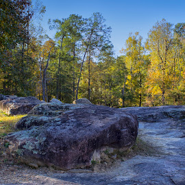 Fall on the Rocks by Thomas Vasas - Landscapes Travel ( parks, scenics, travel, landscapes, rocks )