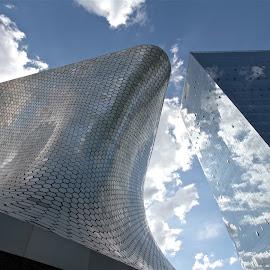 MUSEO SOUMAYA / PLAZA CARSO by Jose Mata - Buildings & Architecture Architectural Detail