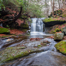 Waterfall in the Woods by Dave Bradley - Landscapes Waterscapes ( water, outdoor photography, nature, outdoor, waterfall, long exposure )