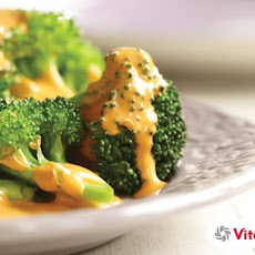 "Vitamix Vegan ""Not So Cheese"" Sauce"