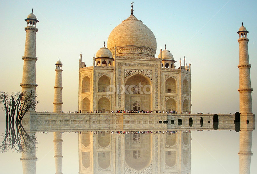 The magnificent monument by PINAKI MITRA - Buildings & Architecture Public & Historical ( muslim, marble, reflection, mausoleum, islamic, uttar pradesh, architecture, mumtaj mahal, taj mahal, agra, monument, india, minarets, mughal,  )
