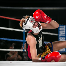 TKO by Reza Roedjito - Sports & Fitness Boxing