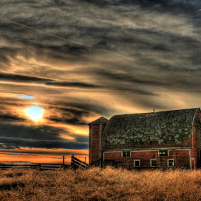 Red Barn by Eric Demattos - Buildings & Architecture Public & Historical ( wheat field, red barn, sunset )