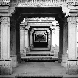 Adalaj Step Well by Jay Dhorajiya - Buildings & Architecture Architectural Detail ( canon, history, details, black and white, india, architectural detail, illusion, architecture, historical )