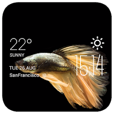 Fish weather widget/clock