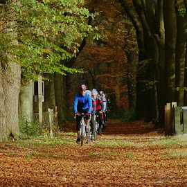 Cross cycling in the forest! by Gert de Vos - Sports & Fitness Cycling