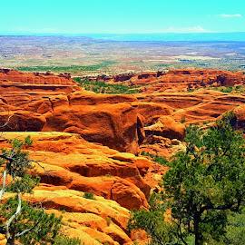 Arches Land by Shane Lusk - Landscapes Deserts ( moab, desert, arches national park, utah, landscape )