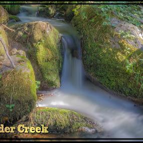 Boulder Creek 2 by Danny Bruza - Landscapes Waterscapes ( boulder creek, flowing water, tulare, alpine village, water )