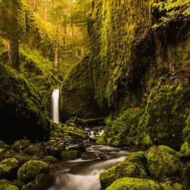 Mossy Grotto Falls by Ivan Johnson - Landscapes Waterscapes