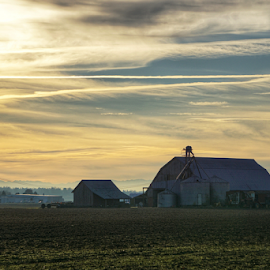 Barns of Skagit Valley  by Todd Reynolds - Buildings & Architecture Other Exteriors
