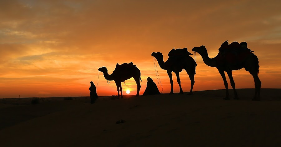 by Sudhir Nambiar - Landscapes Deserts (  )