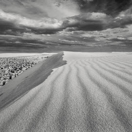 Life Lines  by Michael Keel - Landscapes Deserts ( dunes, desert, white sands national monument, new mexico )