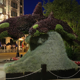 Whale Plant-Sculpture by Jeannine Jones - City,  Street & Park  Street Scenes