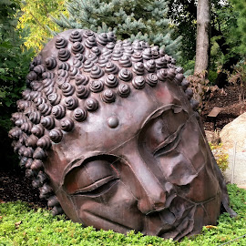 Long Island Buddha by Tina Stevens - Artistic Objects Other Objects ( religion, face, sculpture, metal, art, buddhist, brass, sleeping, head, garden, iron, buddha, artwork )