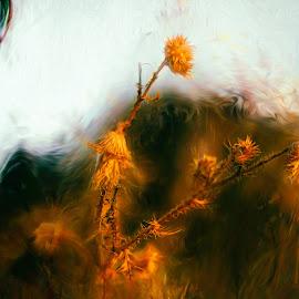 Golden Flowers by Plamen Mirchev - Digital Art Abstract ( flowers, color, abstract art, autumn, flower,  )