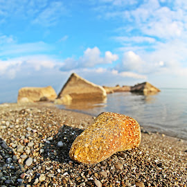 Lakeview Stone. by Mohamad Darwiche - Nature Up Close Rock & Stone