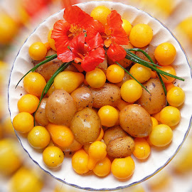 Potatoes Yellow Tomatoes Nasturtium and Chives Artography by Robin Amaral - Food & Drink Fruits & Vegetables ( whole foods, potatoes, vegetables, veggies, tomatoes, vegan, organic, nutrition, nasturtium, food, vegetarian, chives, produce )
