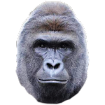 Save Harambe file APK Free for PC, smart TV Download