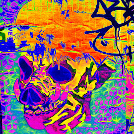 The Acid Tripping Boar by Matthew Jensen - Digital Art Abstract ( acid tripping boar, trippy street art, psychedelic art, trippy digital art, pike place market, seattle washington )