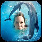 Dolphin Photo Frames Icon