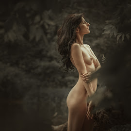 Nymph by Dmitry Laudin - Nudes & Boudoir Artistic Nude ( body, girl, nude, nature, beauty, river, nymph )