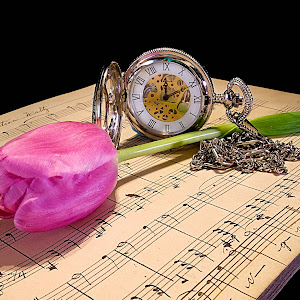 Tulip Watch Music5 Vib.jpg