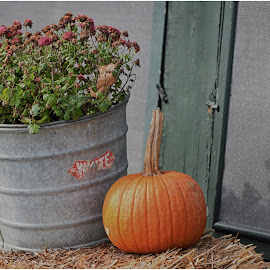 Fall Decor  by Lorraine D.  Heaney - Artistic Objects Still Life