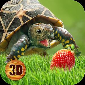 Turtle Simulator House Life