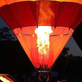 Fired Up by Corey Williamson - Transportation Other ( hot air balloon, air, night, festival, transportation, balloon, fire )
