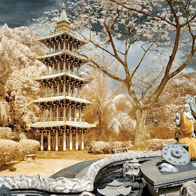 HawPar Villa by Jimmy Chiau - City,  Street & Park  City Parks ( tree, infrared, west coast, city park, singapore )