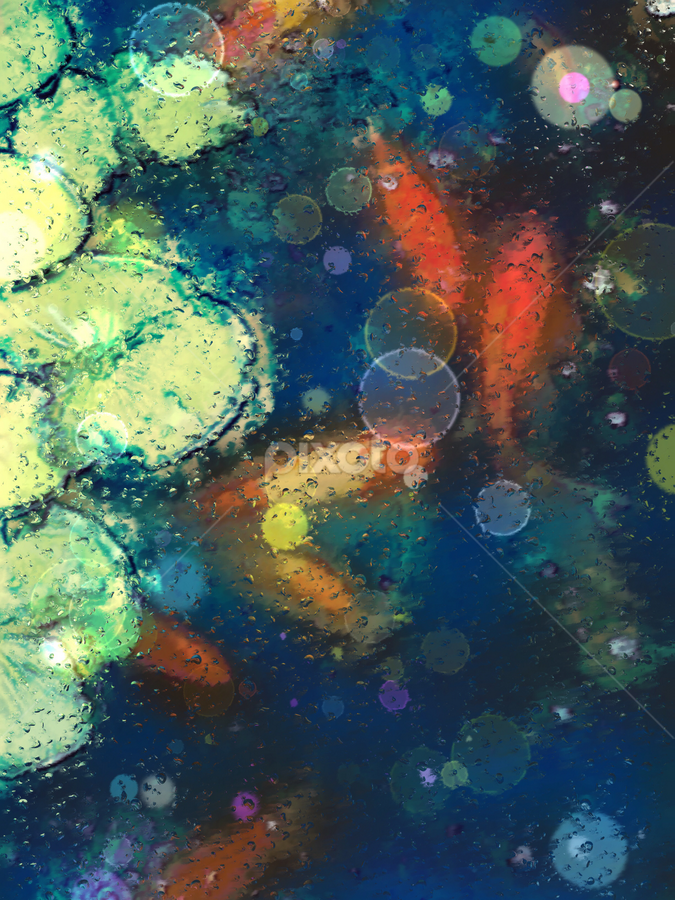 Koi by Jax Welborn - Abstract Light Painting