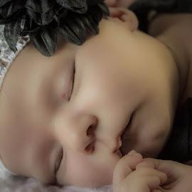 Sleeping Beauty by April Sadler - Babies & Children Babies ( #newborn #child #sleeping #bow #sweet )