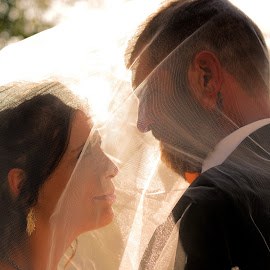 together by Laura Burnett - Wedding Bride & Groom ( love, wedding, viel, couple, sun )