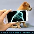 Descargar Xray Scanner Animals Prank 1.0 APK