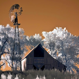 Yesterday by Ken Smith - Buildings & Architecture Decaying & Abandoned ( barn, infrared, landscape, windmill )
