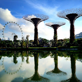 Time for reflection..@ Gardens by the Bay by Janette Ho - Instagram & Mobile iPhone ( , relax, tranquil, relaxing, tranquility )