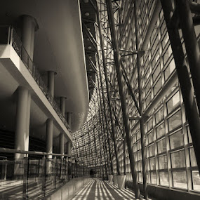 Blinded Light Pathway (Schuster Center, Dayton, OH) by Josh Mayes - Buildings & Architecture Other Interior ( center, interior, windows, lines, architecture, light, schuster, curves, shadows, pillars )