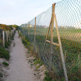 Path Over Fistral Beach by DJ Cockburn - Buildings & Architecture Other Exteriors ( england, britain, cornwall, golf course, golf links, fistral beach, summer, path, wire, newquay, field, uk, fence, footpath )