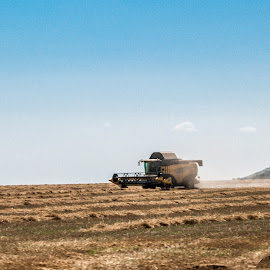 Combine Harvester at work by Amy Gherdan - People Professional People ( work, beautiful, combine, harvester, landscape, combine harvester at work )