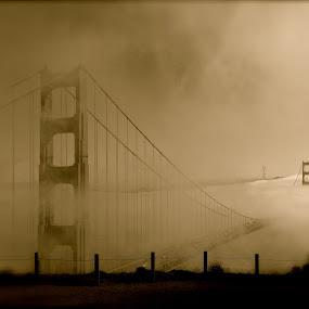 Floating Bridge by Jeff Steiner - Buildings & Architecture Bridges & Suspended Structures ( golden gate bridge, fog, san francisco )
