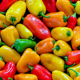 Wet Peppers by Michael Buffington - Food & Drink Fruits & Vegetables ( orange, peppers, red, nature, food, green, vegetables, yellow, natural )