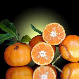 Oranges by Asif Bora - Food & Drink Fruits & Vegetables