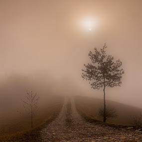 Hope by Ivan Bertusi - Landscapes Weather ( fog, view, hope, landmark, travel )